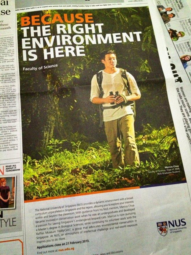 marcus newspaper